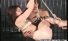 two guys have bdsm fun with a cutie