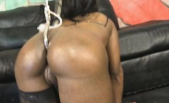 Slamming White Dick In To Trazcy Kush From Behind On Sofa