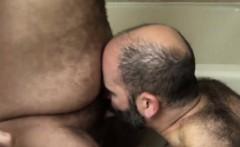 Hairy Chub Enjoys Getting His Cock Sucked