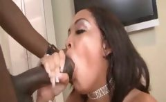 BBC In Big Ass Hoe Pussy