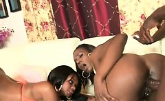 Black Girls With Big Tits And Asses Fucked In Threesome
