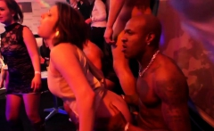 Party loving beauties riding strippers dicks